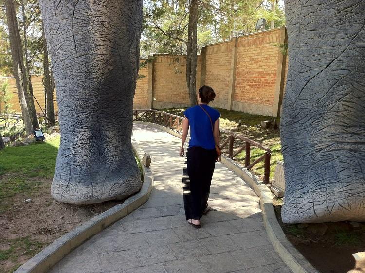 Sucre's Dinosaur Park and Footprints 4
